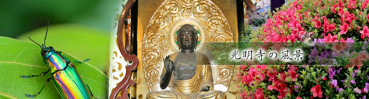 光明寺の風景トップ画像