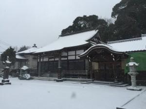 大雪でお寺も銀世界!