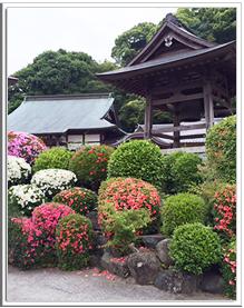光明寺の風景10